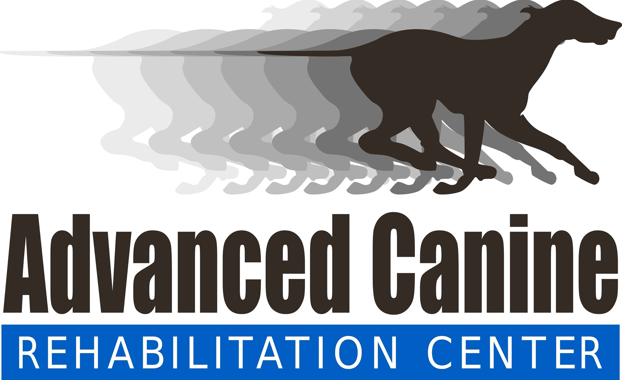 Advanced Canine Rehabilitation
